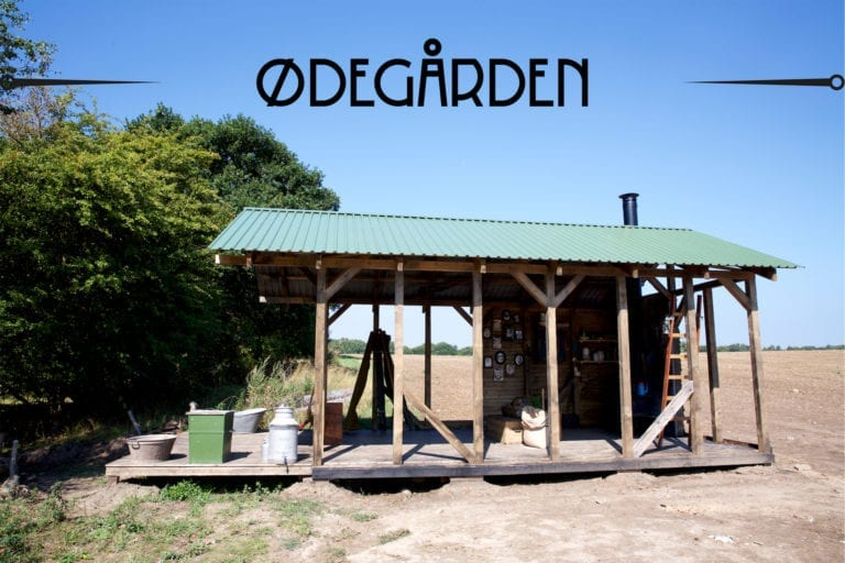 oedegaarden-tv2-play-produceret-af-strong-productions